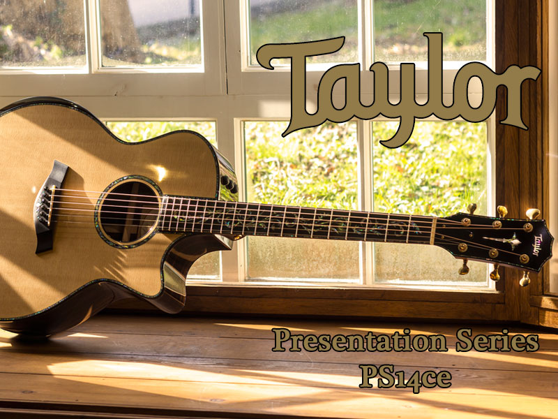 GUITAR OF THE MONTH: Taylor PS14ce Presentation Series image